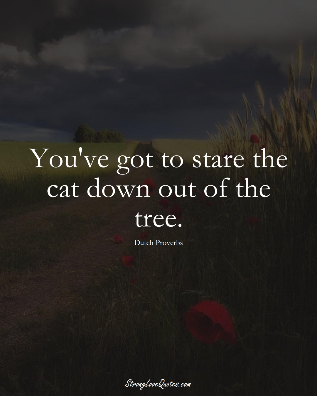 You've got to stare the cat down out of the tree. (Dutch Sayings);  #EuropeanSayings