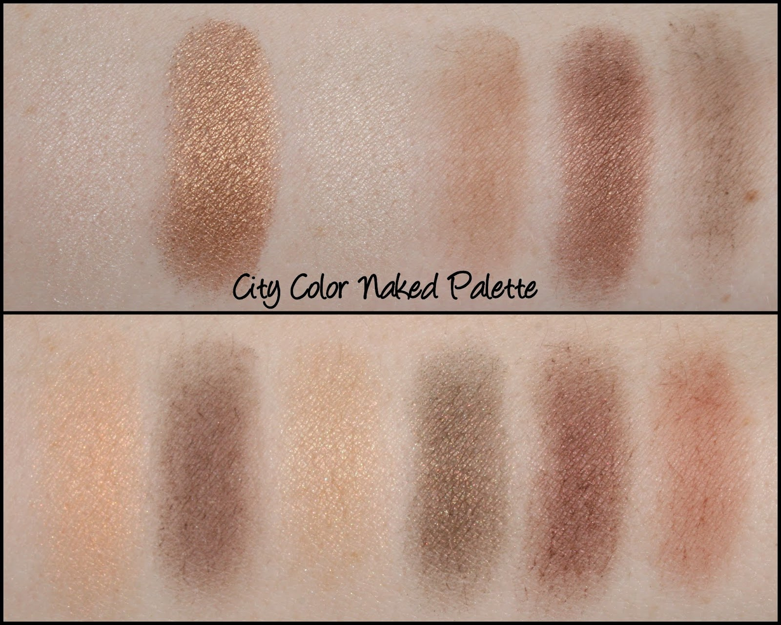 Bold Brow Kit by city color #16