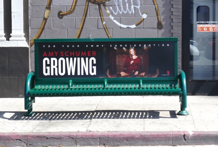 Amy Schumer Growing Emmy FYC bench ad
