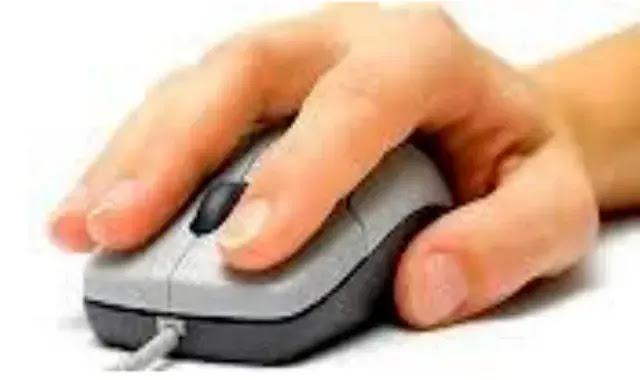 الماوس في  الحاسوب Mouse