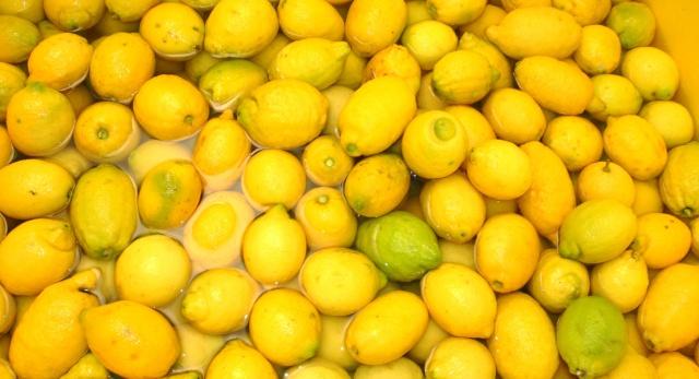 limoni-di-sorrento-poracci-in-viaggio