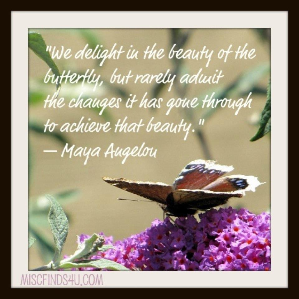"""Inspirational Quotes Surgery: The Journey Of """"Kara The Caterpillar"""" :): God Is In"""