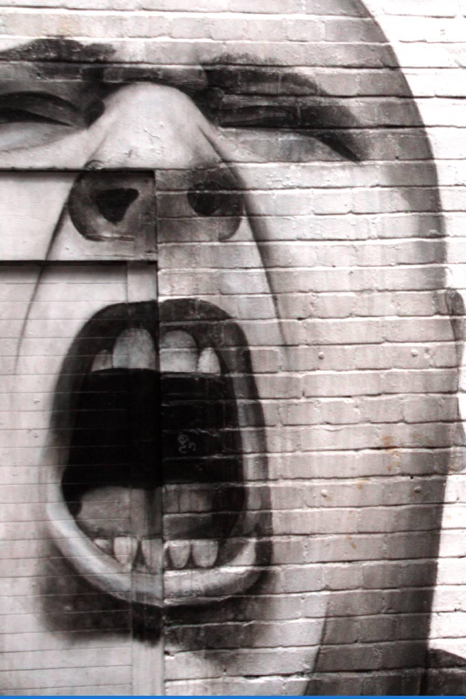 literatura paraibana fanatismo extremismo esquerdismo politica brasileira chico viana