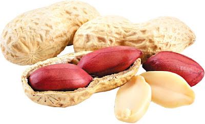 kacang tanah makanan untuk ibu mengandung