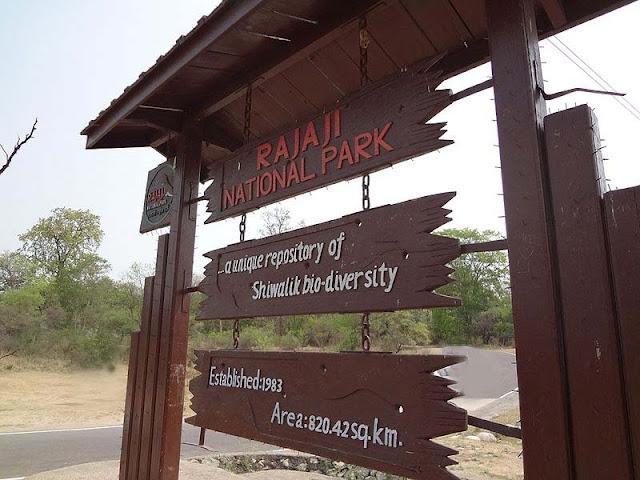 राजाजी नेशनल पार्क