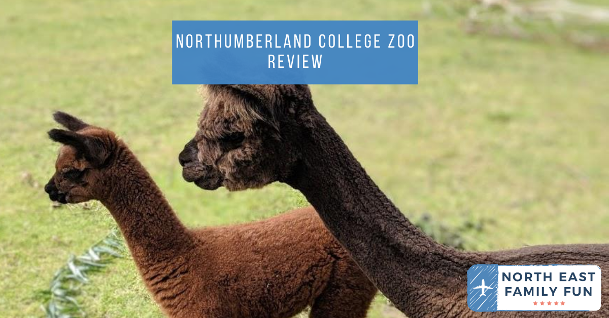 Northumberland College Zoo Review