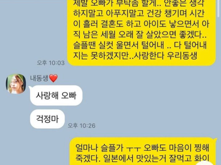 This is Goo Hara's Last Chat with Her Brother Before Died