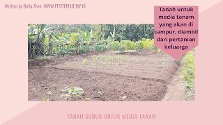 Tanah Subur Untuk Media Tanam