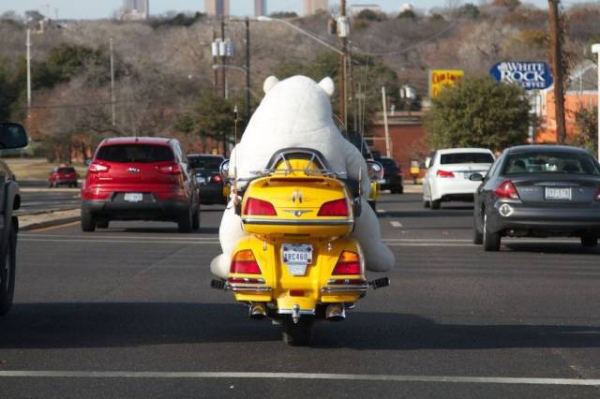 de fantasia na moto