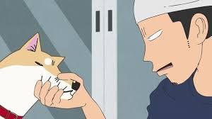 Chú chó đáng yêu  Itoshi no Muco
