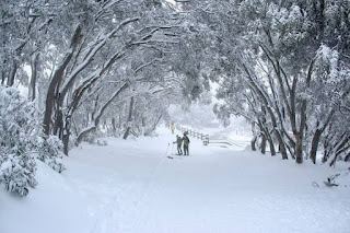 9 Benefits of Winter for Human Life