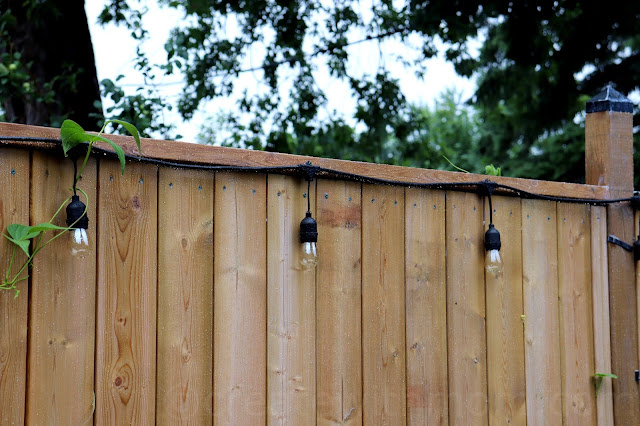 applying Rustoleum RESTORE® 12x Clear Coat Transparent Stain & Sealer to fence