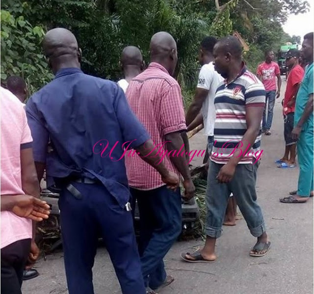 N50 Million Paid For Funeral Rite of Killed Crocodile By Agip In Delta State