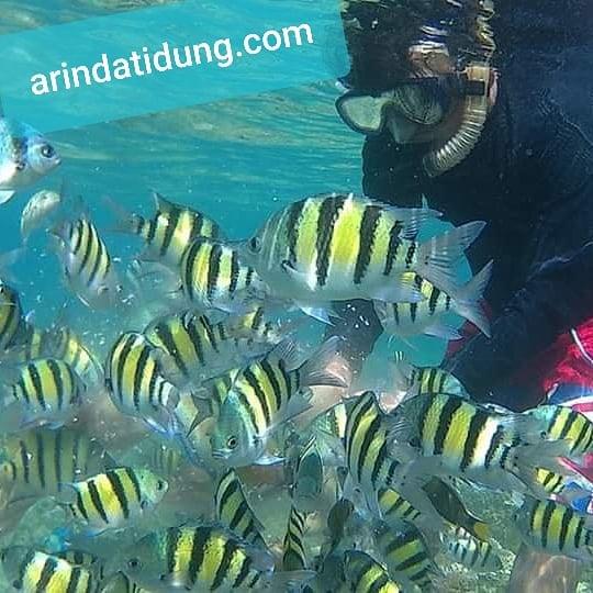 Wisata Pulau Tidung Paling Hits Cocok Buat Liburan Tahun Baru