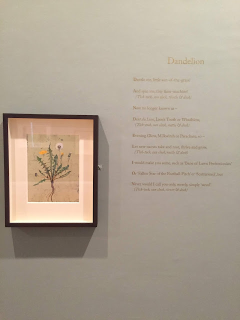 The Lost Words exhibition at the Royal Botanic Gardens Edinburgh