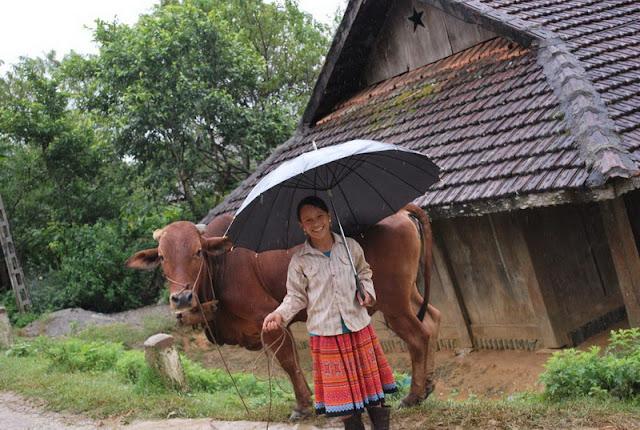 Hoa Binh Travel