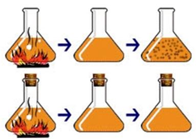 Percobaan Lazzaro Spallanzani menggunakan kaldu dan labu