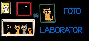 Foto laboratori