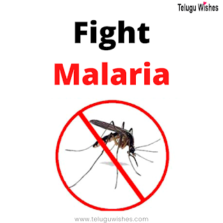 fight amalaria, World Malaria Day