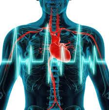 Obat jantung berdebar