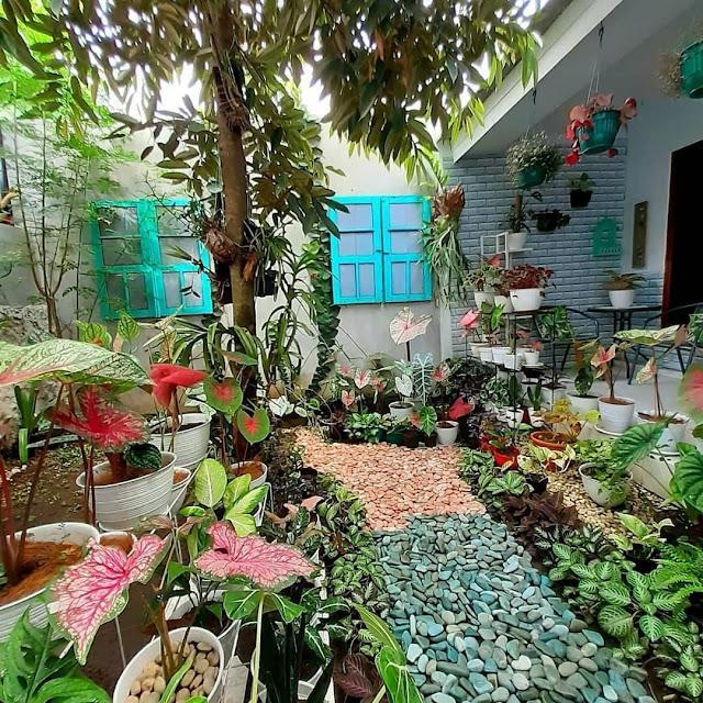 Desain Taman Depan Rumah Mewah Minimalis