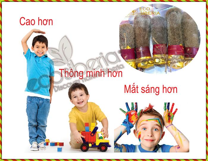 Tác dụng của cao ban long cho trẻ