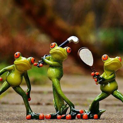 mendak-frog-imgs-playing-hocky-bedmintan