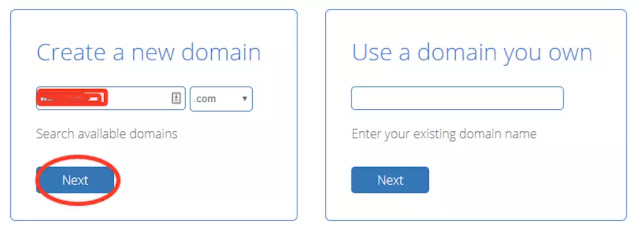 Choosing the hosting plan and Domain