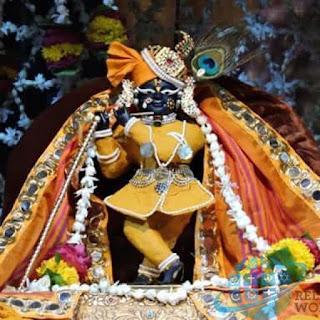 Bihari ji Witness