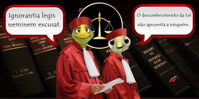 Temas em alta na advocacia