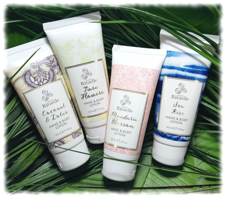All 4 varieties of Hand & Body Lotion on green leaves