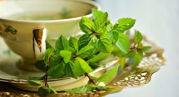 فوائد الشاى الاخضر ، فوائد الشاى ، الشاى الأخضر