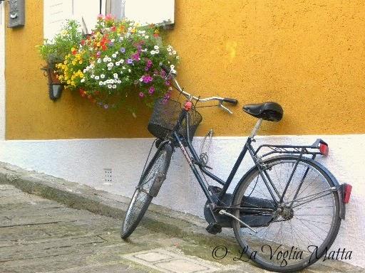 Muggia bicicletta