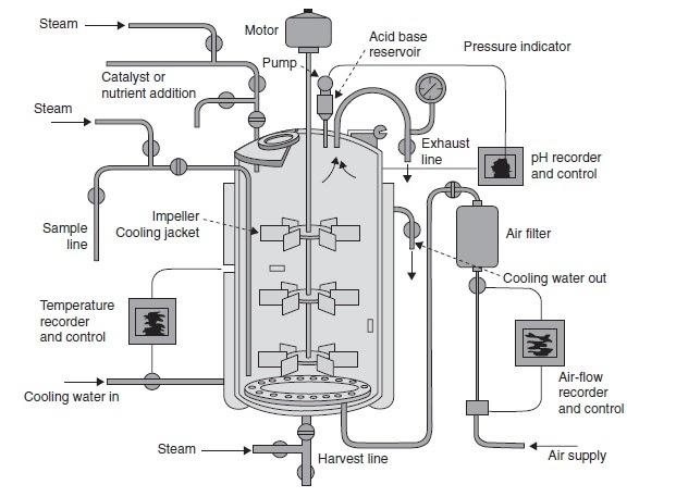 microbiology techniques  fermentation technology