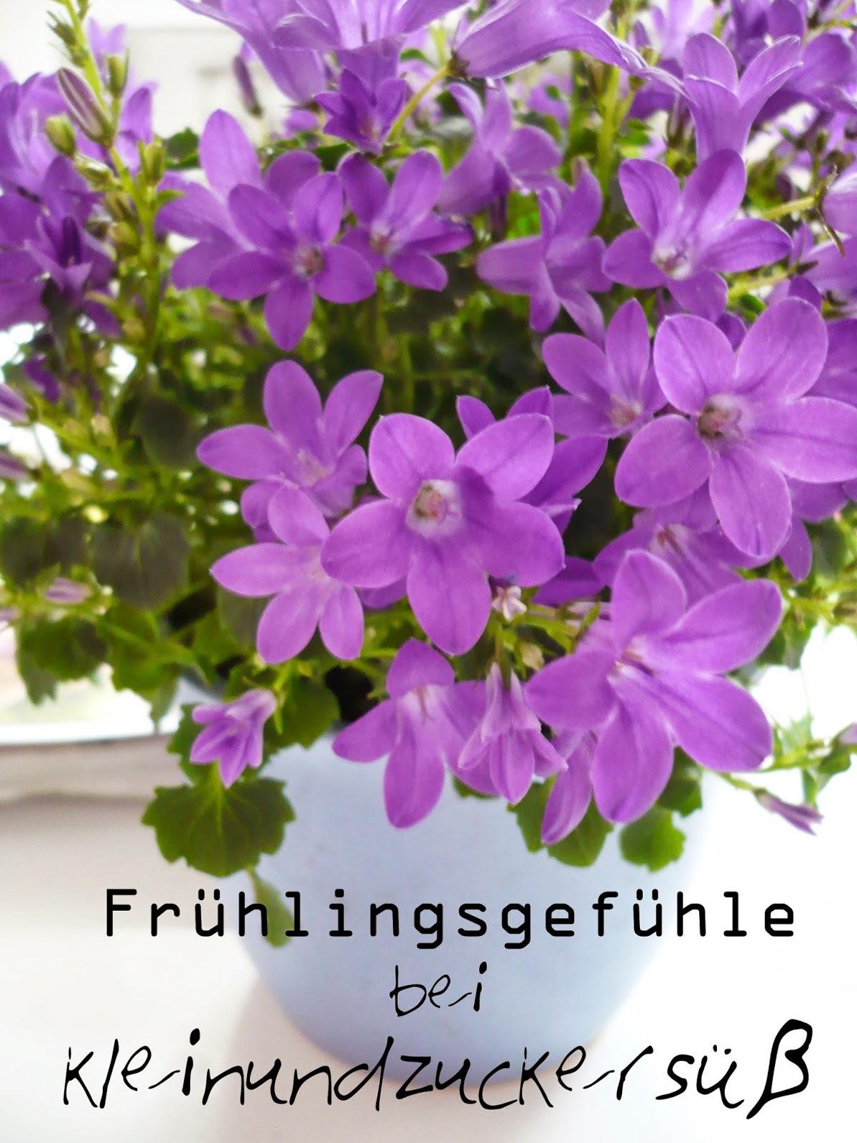 Frühlingsgefühle: Lasst uns gemeinsam backen!