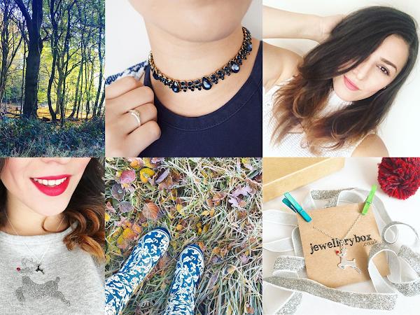 Life Through Instagram   November