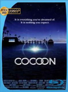 Cocoon 1 (1985) HD [1080p] Latino [GoogleDrive] DizonHD