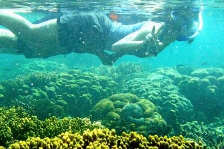 Pulau Pahawang, Lampung 4