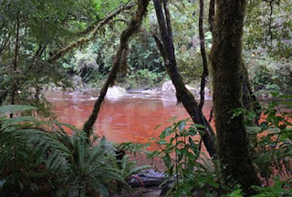 Sungai yang berwarna merah akibat proses dekomposisi tanaman atau vegetasi disekitar aliran sungai