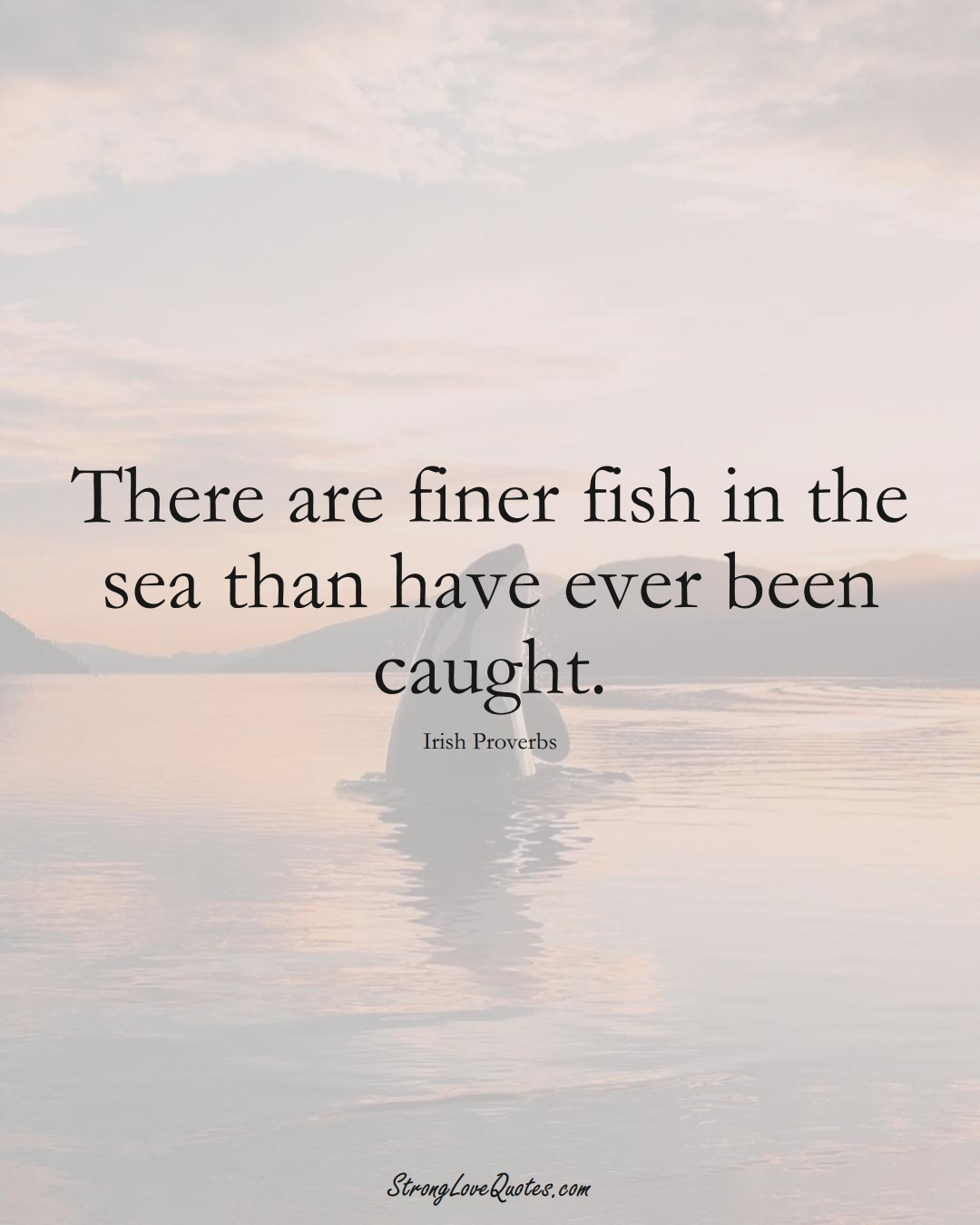 There are finer fish in the sea than have ever been caught. (Irish Sayings);  #EuropeanSayings