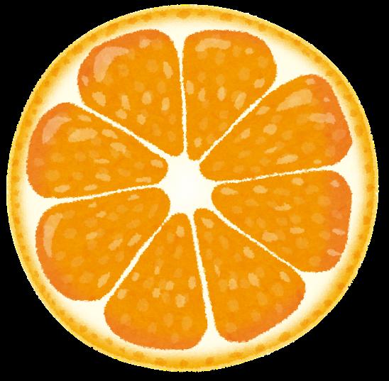 オレンジみかんの断面のイラスト かわいいフリー素材集 いらすとや
