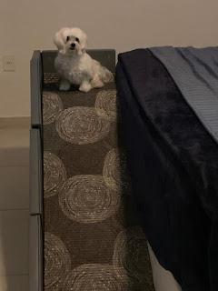 rampa para cama alta