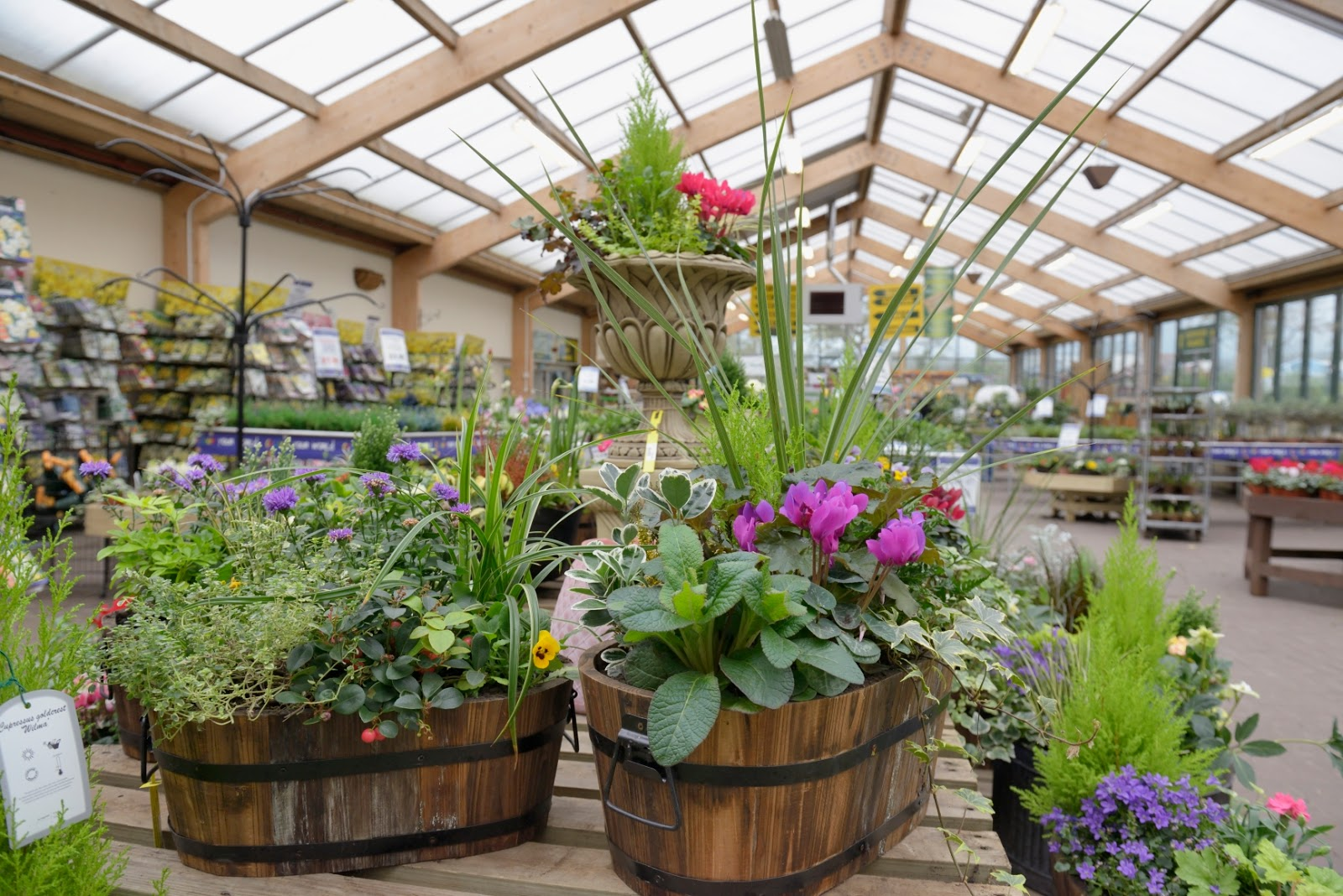 Monkton Elm News Events And Tips Blog Things To Do In The Garden In October