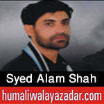 https://aliwalayazadar.blogspot.com/2020/08/syed-alam-shah-rizvi-nohay-2021.html