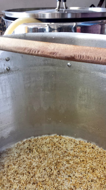 Drained mash from the NEAPA lots of oats and wheat.
