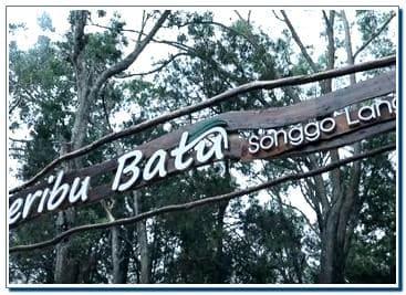 Songgo Langit