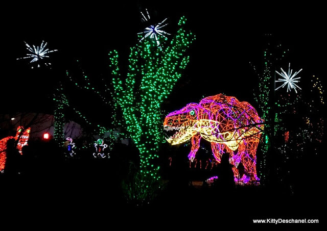 photos from the abq river of lights