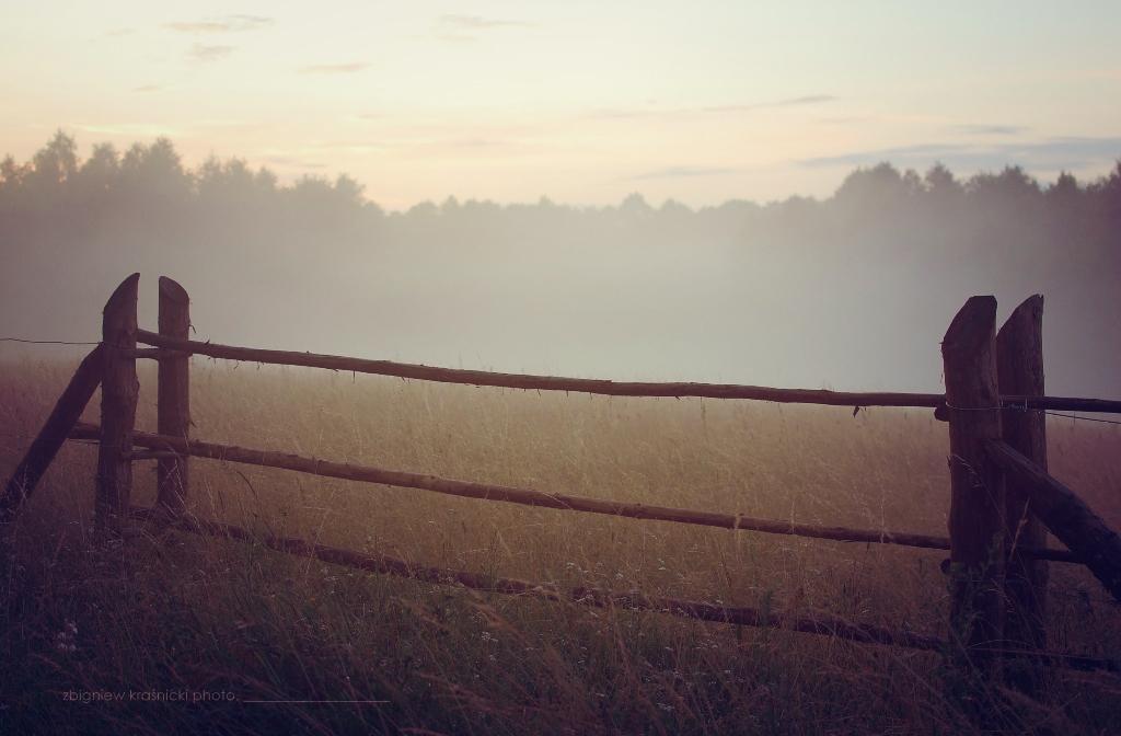 Warmińskie mgły