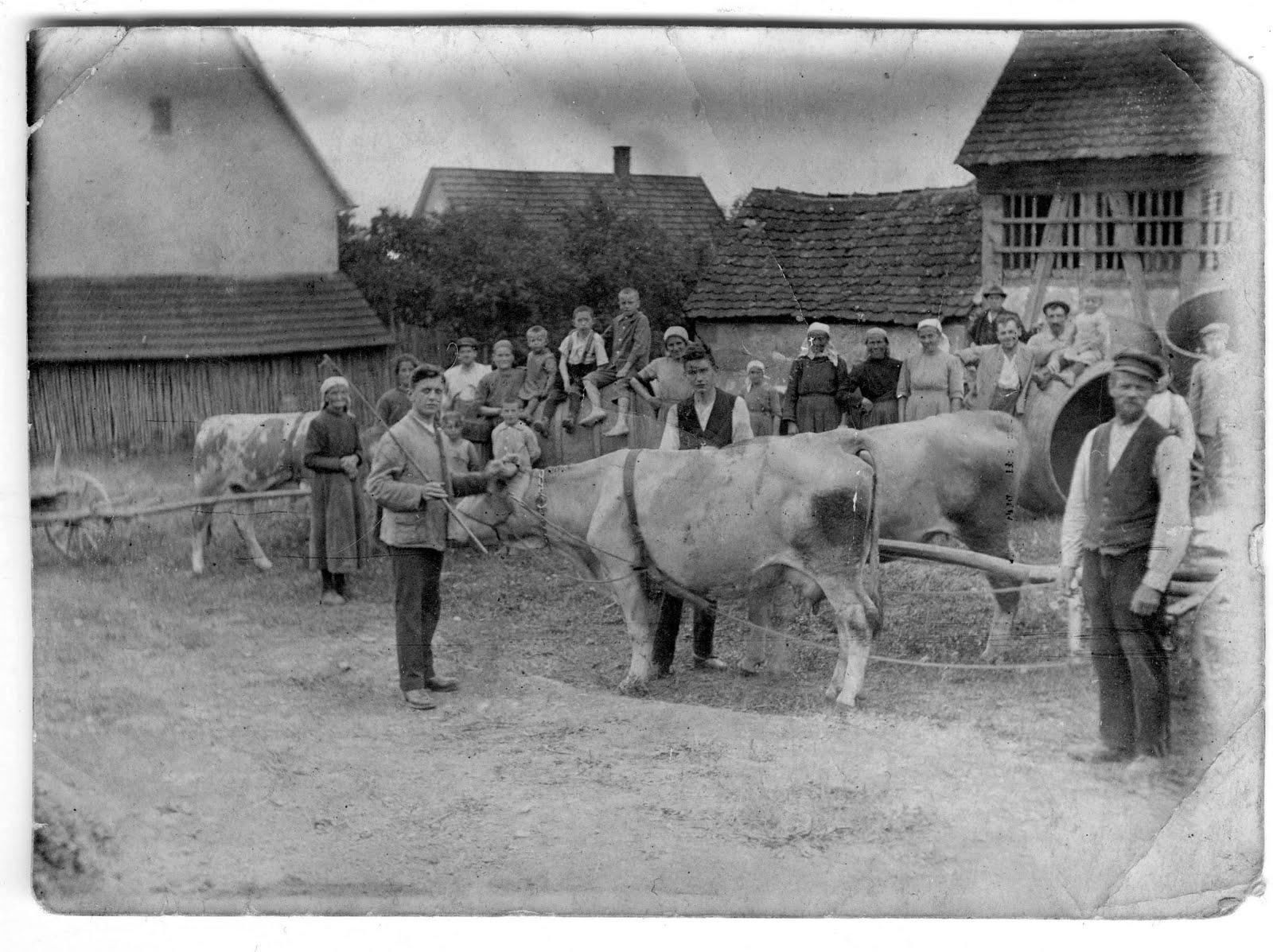 Landwirtschaft Vor 100 Jahren