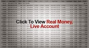 Creating True Wealth as a Forex Trader